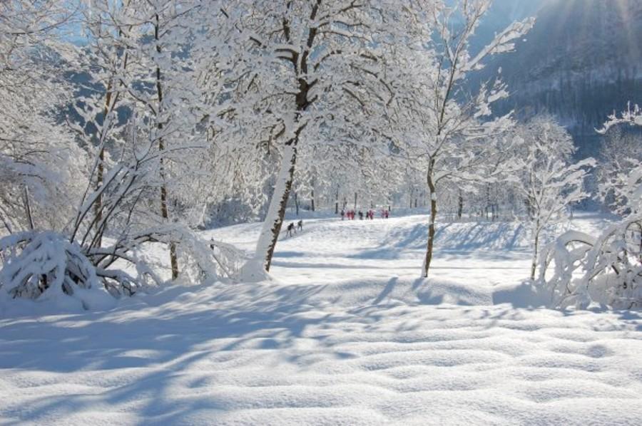 Foto dal sito ATL Cuneo